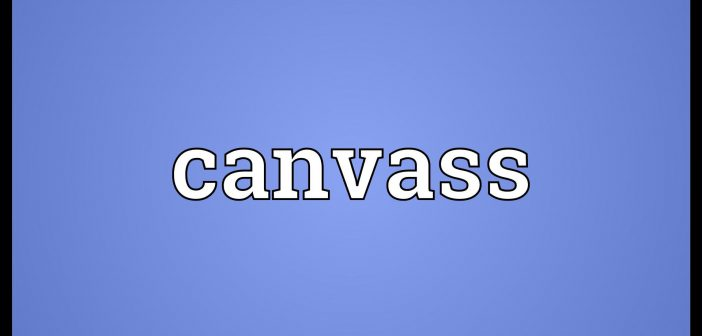 canvass meaning